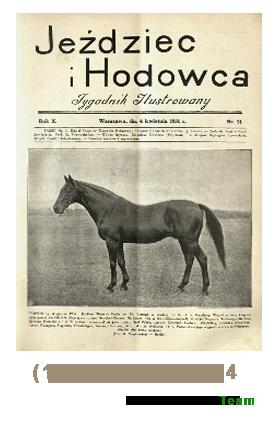 Jeździec i Hodowca, R. 10 (1931), Nry 14, 13-24